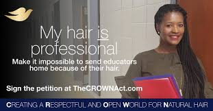 Dove_Crown Act- Professional Hair 2